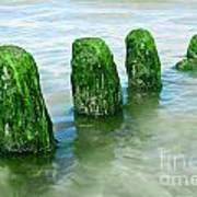 The Green Jetty Art Print