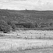 The Hay Field Art Print