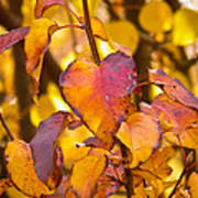 The Heart Of Fall Art Print