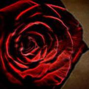 The Rose Digital Art Art Print