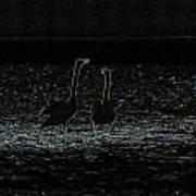 The Swan Of Tuonela Art Print