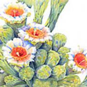 Top Bloomers Art Print