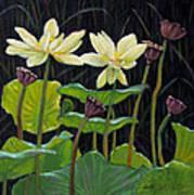 Touching Lotus Blooms Art Print