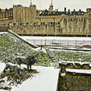 Tower Of London  Art Print