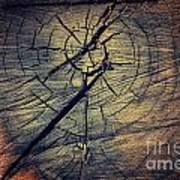 Tree Texture Background Art Print