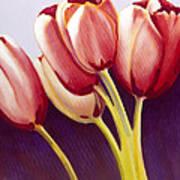 Tulips Are People Xiii Art Print