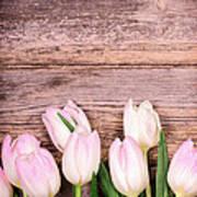 Tulips Over Old Wood Art Print