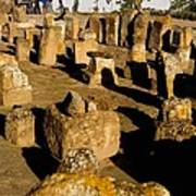 Tunisia. Carthage. Tablets In Tophet - Art Print