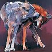 Two Wolves Art Print by Mark Adlington