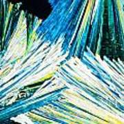 Urea Or Carbamide Crystals In Polarized Light Art Print