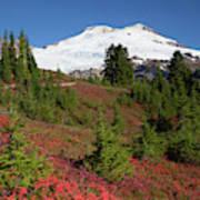 Usa, Washington State, Mount Baker Art Print