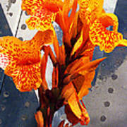 Ventura Flower Print by Ron Regalado