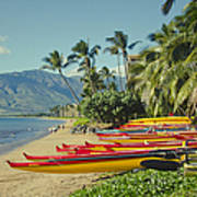 Kenolio Beach Sugar Beach Kihei Maui Hawaii  Art Print