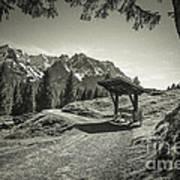 walking in the Alps - bw Art Print