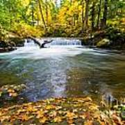 Waterfall On Whatcom Creek Art Print