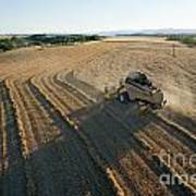 Wheat Harvest In Provence Art Print