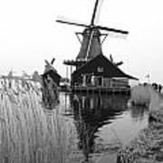 Wind Mill Art Print