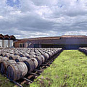 Winery Wine Barrels Outside Clouds Panorama Art Print