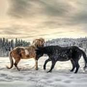 Winter Challenge Art Print