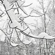 Winter Snow Scene In New England Art Print