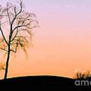 Winter Sunset Tree Art Print