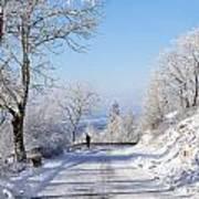 Winter Tree Germany Print by Francesco Emanuele Carucci