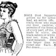 Women's Fashion, 1895 Art Print