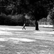 Young Boys Playing Cricket In A Park Near Delhi Zoo Art Print