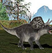 Zuniceratops Dinosaur Art Print