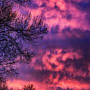 Red Sky At Morning Art Print