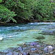 Salmon Creek Art Print