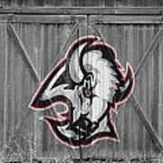 Buffalo Sabres Art Print