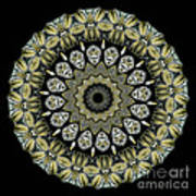 Kaleidoscope Ernst Haeckl Sea Life Series Art Print by Amy Cicconi