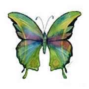 11 Prism Butterfly Art Print