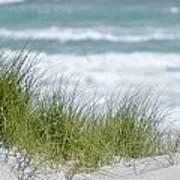 Dune Grass... Art Print
