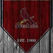St Louis Cardinals Art Print