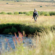 Young Woman Fly Fishing The West Fork Art Print
