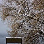 140303a-13 Winter Color Art Print