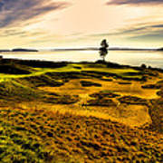 #15 At Chambers Bay Golf Course  Art Print by David Patterson