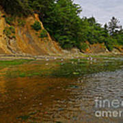 Sunset Bay State Park Art Print by Gail Peters
