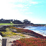 17 Mile Drive Shore Line II Print by Barbara Snyder