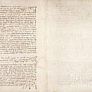 Drawings By Leonardo Da Vinci Art Print
