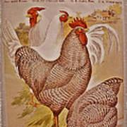 1909 California State Fair Poster Art Print