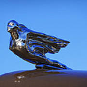 1941 Cadillac Series 62 Coupe Hood Ornament Art Print