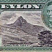 1946 Ceylon - Sri Lanka - Stamp Art Print
