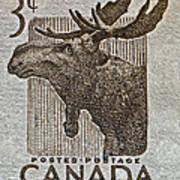 1953 Canada Moose Stamp Art Print