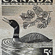 1957 Canada Duck Stamp Art Print