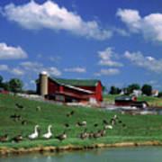 1990s Amish Family Farm Bunker Hill Art Print