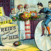 19th C. Reid's Flower Seeds Art Print