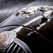 1964 Jaguar Mk2 Saloon Hood Ornament And Emblem Art Print